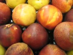 pluot(0.0), plant(0.0), nectarine(0.0), produce(1.0), fruit(1.0), food(1.0), myrciaria dubia(1.0),