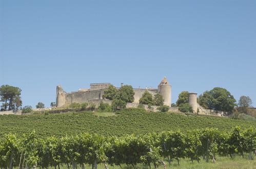 Gironde 16.jpg