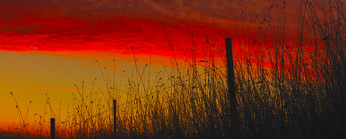 sunset sky grass silhouette clouds rural fence wire glow sundown wheat country barbedwire barbwire tallgrass