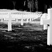 Cimitero americano di Falciani