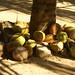 20071221 243 Playa La Bocana-Marquelia por Mario Carrasco Jimenez