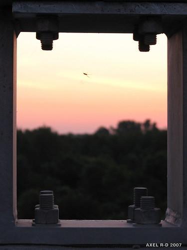 bridge sunrise spider araignée leverdesoleil troisrivières pontlaviolette axelrd
