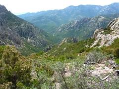 En haut de la raide montée finale avant le col : la vallée de Peralzone et la crête remontée