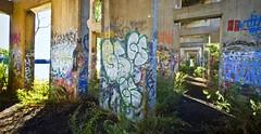 Philadelphia Graffiti Underground - 8