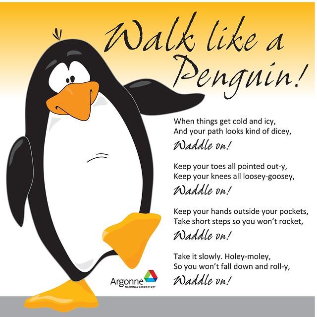 Walk like a Penguin  Flickr - Photo Sharing!