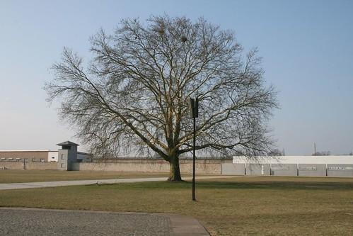 Sachsenhausen 160307  034