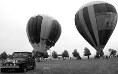 Balloon And Whine Festival