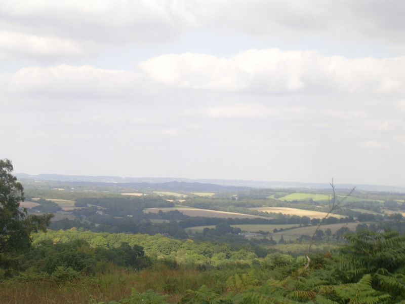View 1 Ashdown Forest. Forest Row Circular