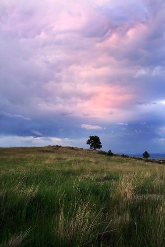 pink sunset landscape montana helena lonepine soe mammatus ©tylerknottgregson