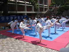 striking combat sports(1.0), individual sports(1.0), contact sport(1.0), taekwondo(1.0), sports(1.0), combat sport(1.0), martial arts(1.0), karate(1.0),