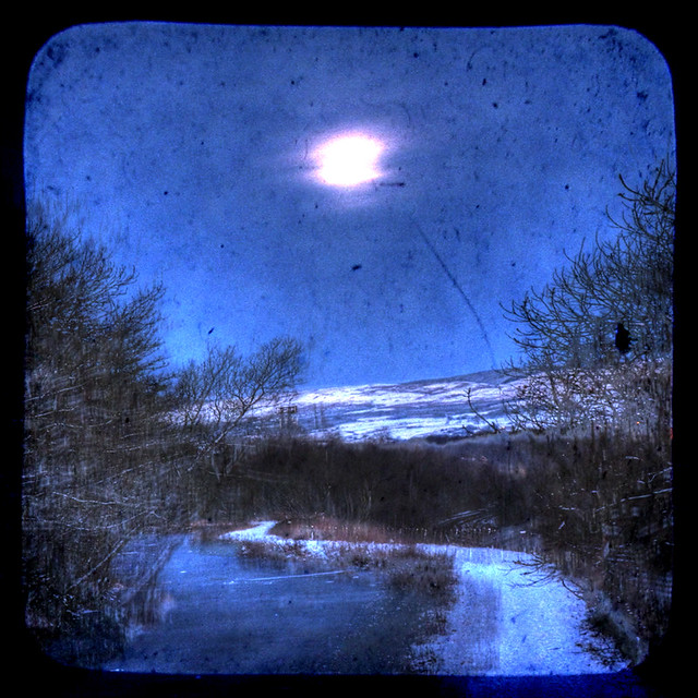 Moonlight on the Canal