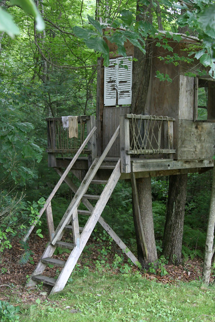 Treehouse Stairs Flickr Photo Sharing