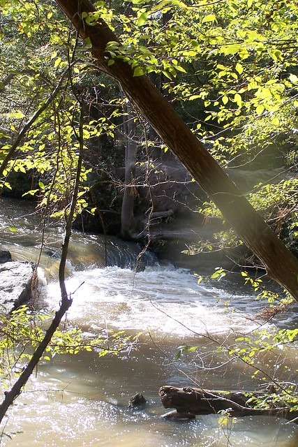 kisatchie falls