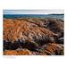 Sunburst Lichen (Xanthoria elegans), Peachey Island