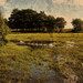 Hatchet Pond swan family (Constable remix) by Skink74