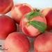 Fresh Picked Peaches by Heather Bullard