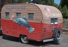 automobile, art, vehicle, transport, trailer, land vehicle, travel trailer,