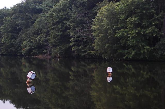 Lake wilhelm flickr photo sharing for Lake wilhelm fishing