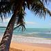 Puerto Rico 2007