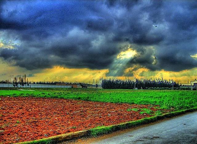 مزرعة – طريق دمشق
