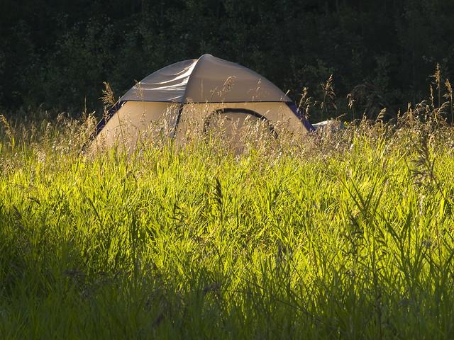 The Silken Tent Analysis