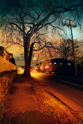 road homes moon tree boston landscape evening streetlamp massachusetts watertown pleasantstreet