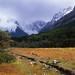 Small photo of Cerro Torre appr