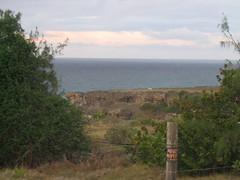 167 - Barbados Countryside