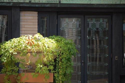 Back Porch Dana-Thomas House via Becky Pitzer on Flickr.