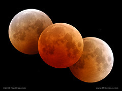 astronomy, event, moon, lunar eclipse, full moon, celestial event, circle, astronomical object,