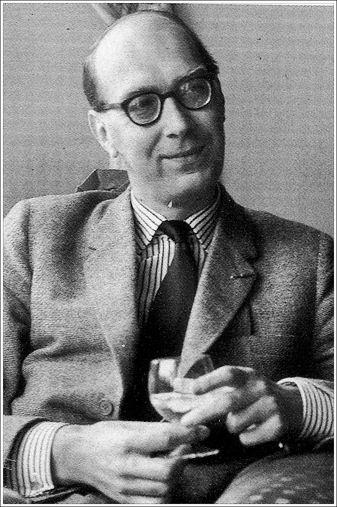 afternoons by philip larkin essay
