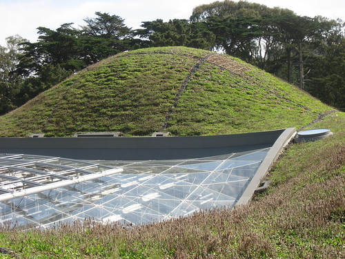 Green Roof at the Cal Academy