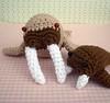 Mama and Baby Walruses