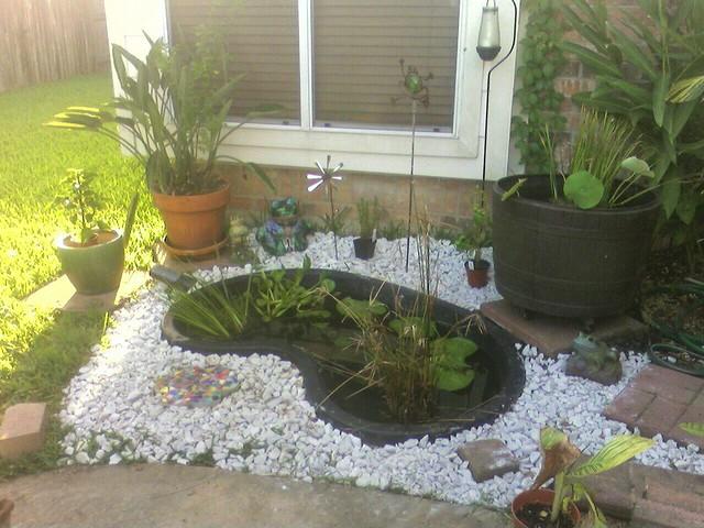 Garden pond set up flickr photo sharing for Outdoor fish pond setup