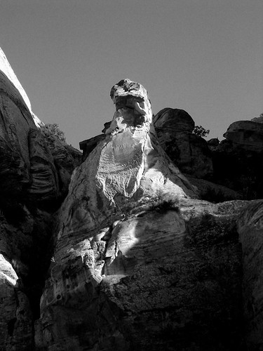 Rock Chicken, Grand Wash, Capitol Reef NP