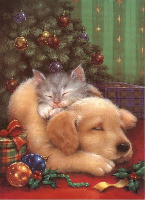 Cute Christmas Cats And Dogs