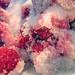 Small photo of Raspberry mash