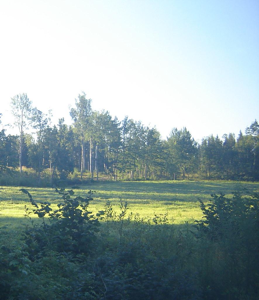 Maalaismaisema elokuussa 2007