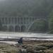 Heceta Head bridge by stormyweather36