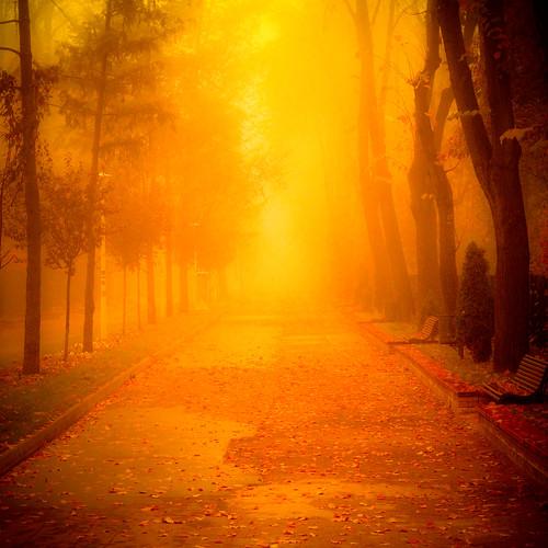 park hot fog hurts eyes warm bright burns romania future sight bucharest colortreatment interviu mg9012edit 11decembrie2015