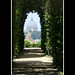 Giardino degli Aranci by kingmky