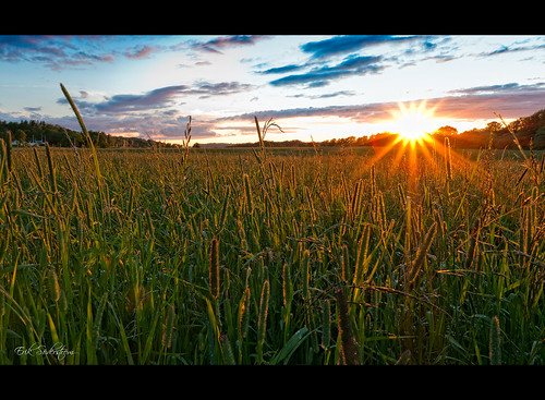 sunset sun sol field göteborg iso100 nikon sweden gothenburg sigma flare fields sverige 1020mm 1020 flares solnedgång d300 äng 1xp björlanda