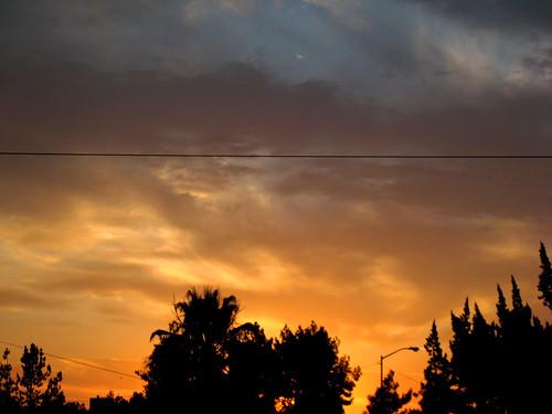 orange tree silhouette clouds sunrise fresno july62007