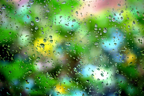 autumn fall drops raw rainyday bokeh southcarolina explore paintshoppro aloha maxxum5d coth supershot rockhillsc bej pspx2 beyondbokeh kycmhts throughhawaiianeyessecretgardenofexcellence throughhawaiianeyesofloveandlight
