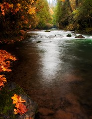 On the White Salmon River