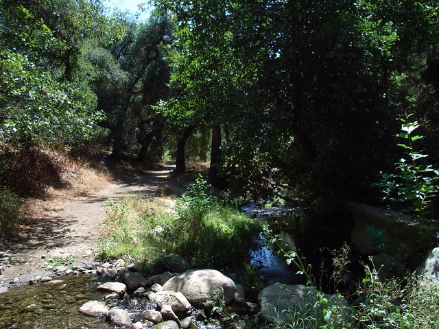 Solstice Cyn Trails 048