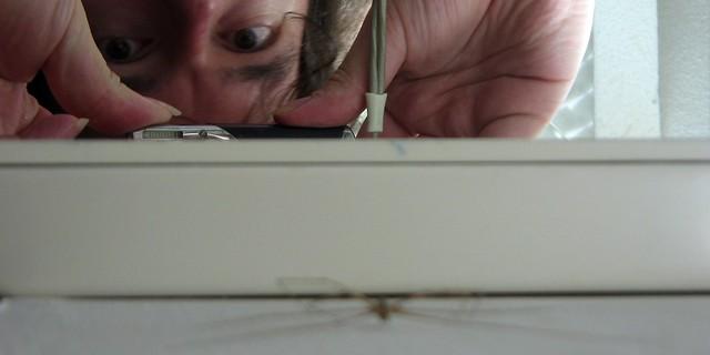 Robot spider III