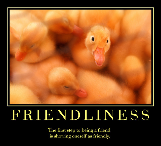 Friendliness   Flickr - Photo Sharing!