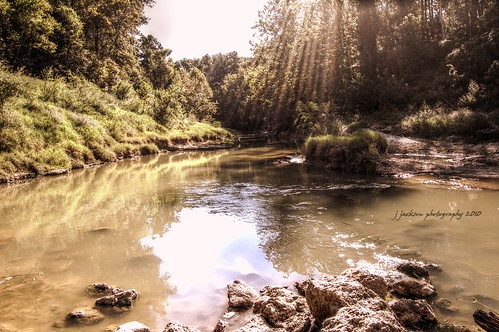 nature creek spring texas cypress