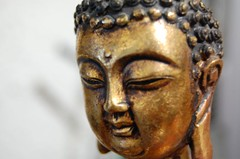 carving, art, ancient history, temple, sculpture, head, close-up, bronze, gautama buddha, statue,